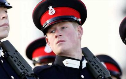 El príncipe Harry vende sus rifles de caza en honor a Meghan Markle